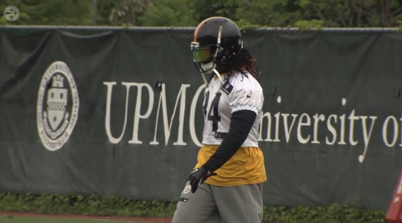 DeAngelo_Williams_OTA_2015