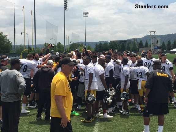 Steelers_2015_Minicamp_Shorts