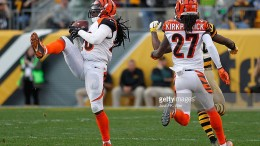 reggie-nelson-steelers-bengals-interception