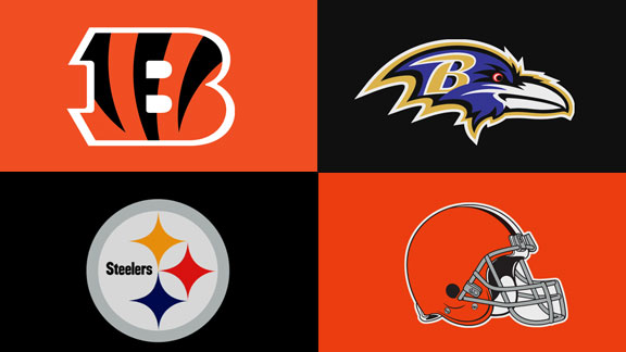 AFC NORTH TEAMS