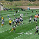 SteelersCampDay1-06987