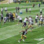 SteelersCampDay1-1679