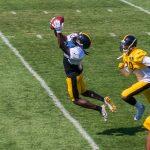 SteelersTrainingCampDay3-2969
