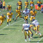 SteelersTrainingCampDay3-3052