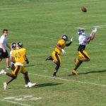 SteelersTrainingCampDay4-3883