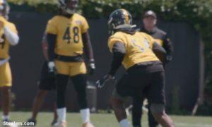 Steelers practice during OTAs