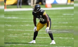 Steelers LB Vince Williams