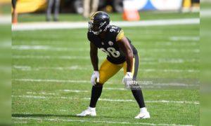 Steelers LB Vince Williams